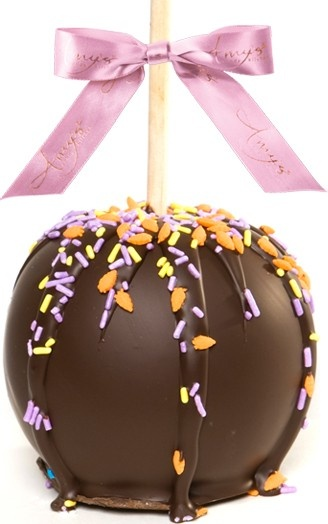 51 best spring easter gifts images on pinterest belgian dunked caramel apple w dark belgian chocolate spring sprinkles all of our gourmet gourmet caramel appleseaster giftapple negle Images
