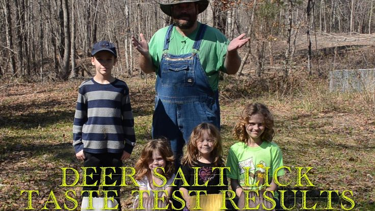 RESULTS - What DO deer Eat? ☘🍀☘ on this episode of J&J Acres  #sustainable #hobbyfarm