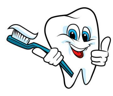Brushing Teeth: Learn the Best Ways To Do So|Plaza Dental