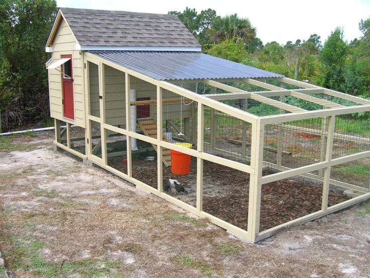 Chicken Coop & Run 6ft x 8ft - BackYard Chickens Community