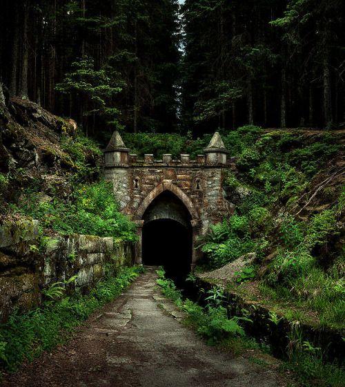 lori-rocks:  ancient bohemian forest road, czech republic…. by...