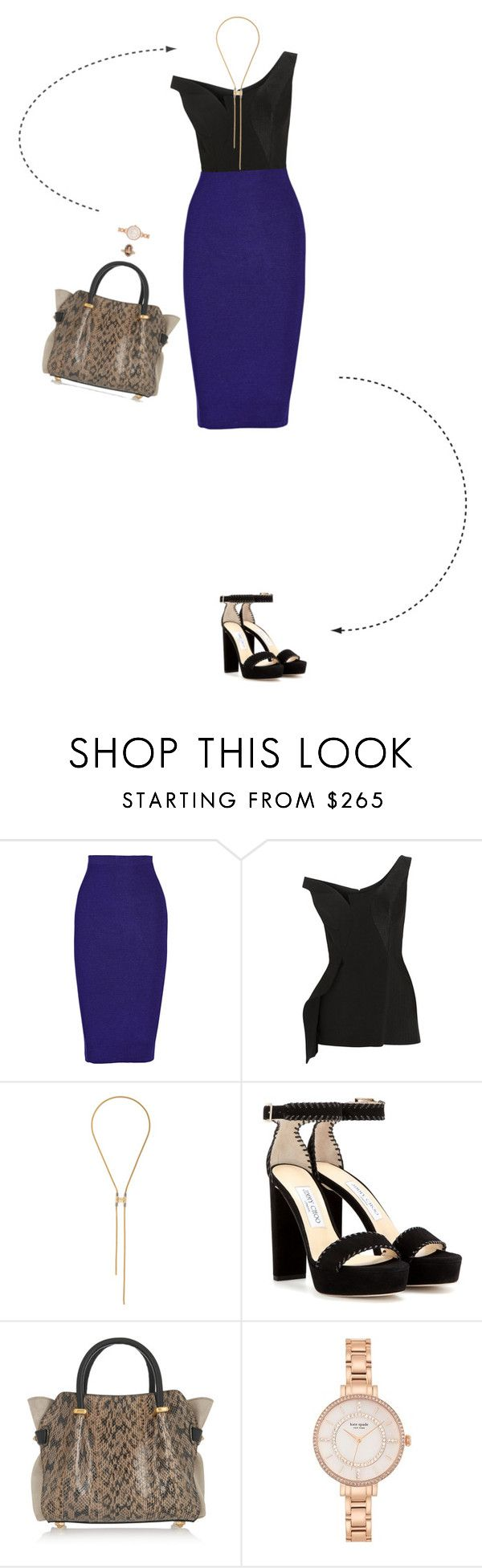 """BTY"" by lory-vicky ❤ liked on Polyvore featuring Cushnie Et Ochs, STELLA McCARTNEY, Lanvin, Jimmy Choo, Nina Ricci and Kate Spade"