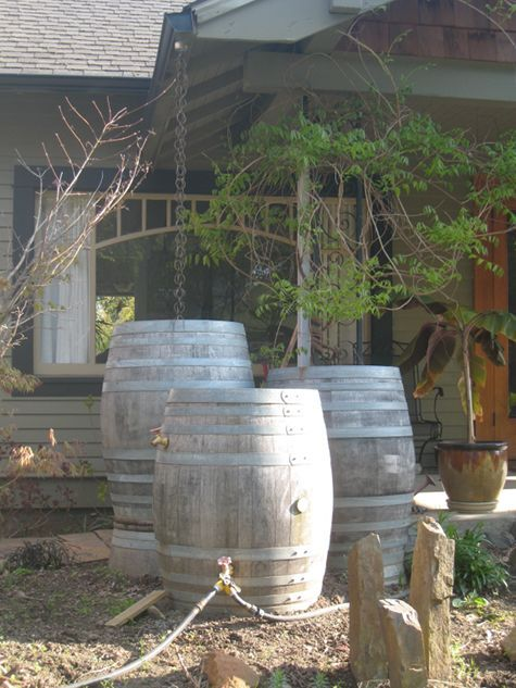"rainbarrels can also be made from repurposed wine barrels, and the barrels can be ""daisy-chained"" together to store even more water. add a rainchain instead of a downspout and you have an amazing set up, like these neighbors down the street!  #countryliving #dreamporch"
