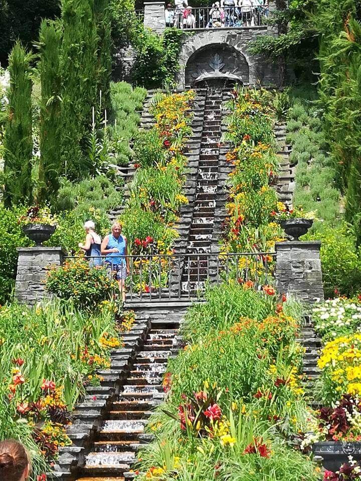 Mainau, a csodálatos virágsziget: a Bóden-tó egyik ékköve a hajóval vagy hídon megközelíthető, fantasztikus botanikus kert https://viragotegymosolyert.hu/mainau-csodalatos-viragsziget/