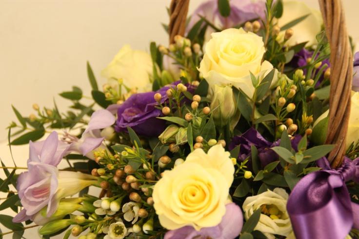 Wax flower, lizzie's, rosa, parvifolia, fresia