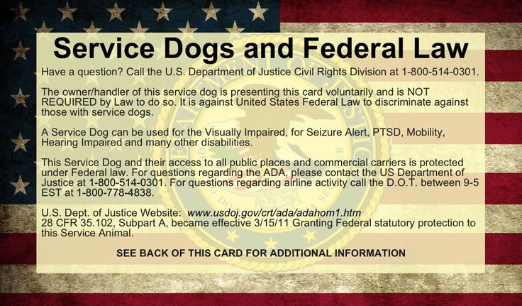 These service dog ADA law information cards can save you a lot of time and frustration. The font size on these cards is small because there is a lot of information on the card. It is the handler, not the dog, that actually has the rights. | eBay!