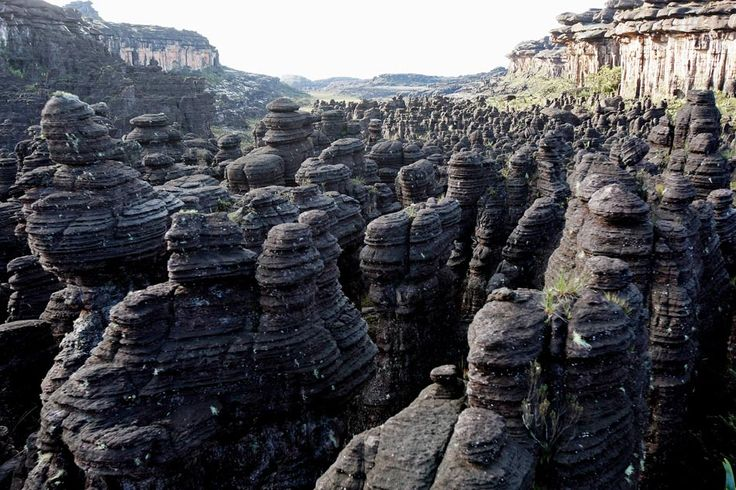 Mount Roraima is among the oldest geological formations on the planet with about 2 billion years.