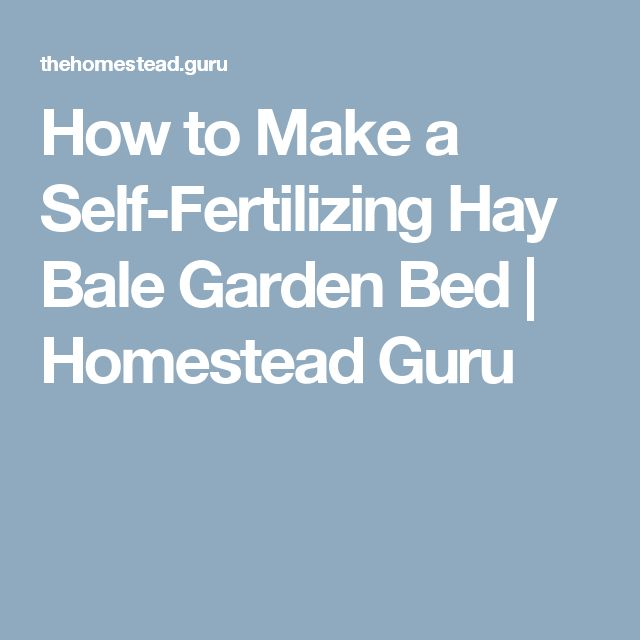How to Make a Self-Fertilizing Hay Bale Garden Bed | Homestead Guru