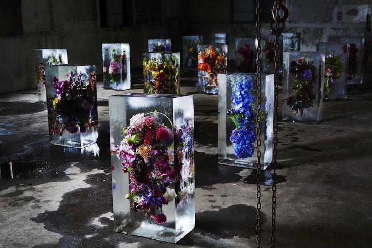 ICED FLOWERS 1