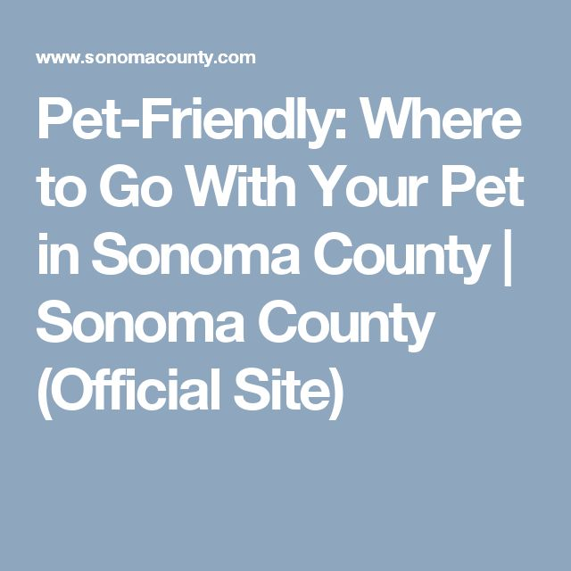 Pet Friendly Where To Go With Your In Sonoma County