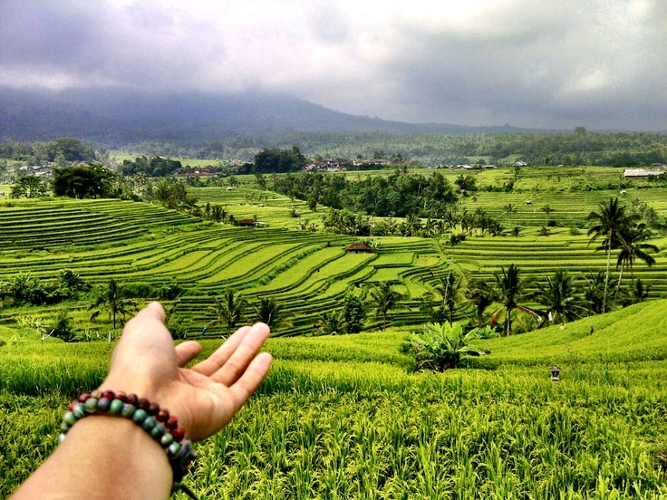 Jatiluwih.. One of Unesco heritage site. Only in Bali! #bali #indonesia