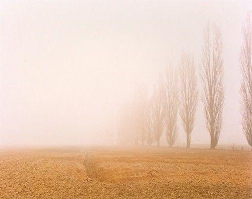 Luigi Ghirri - Emilian countryside 1991