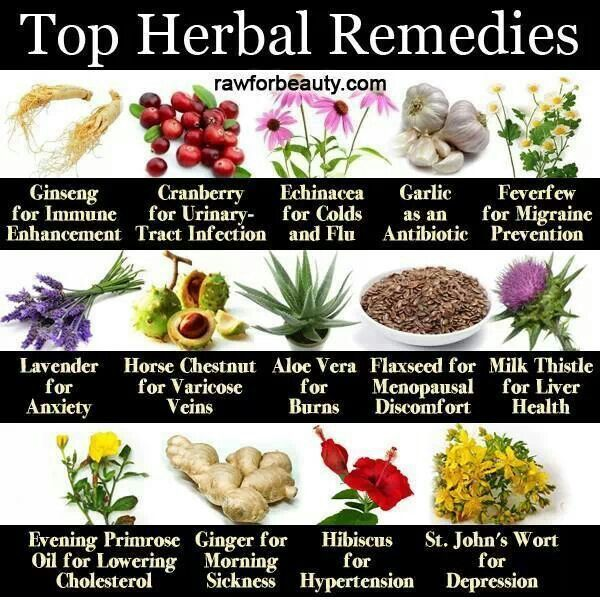 www.herbal-splash.com
