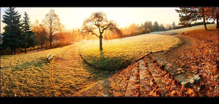 : Benches, Paths, Favorite Places, Autumn, Colors, Beautiful, Leaves, Lap Quilt, Photography