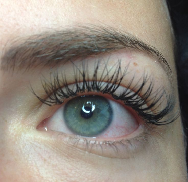 Lashes by Sylz