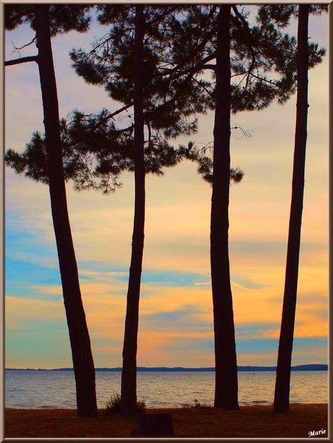 Coucher de soleil sur le Lac de Cazaux, Bassin d'Arcachon