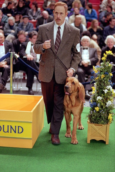 Best In Show, Christopher Guest