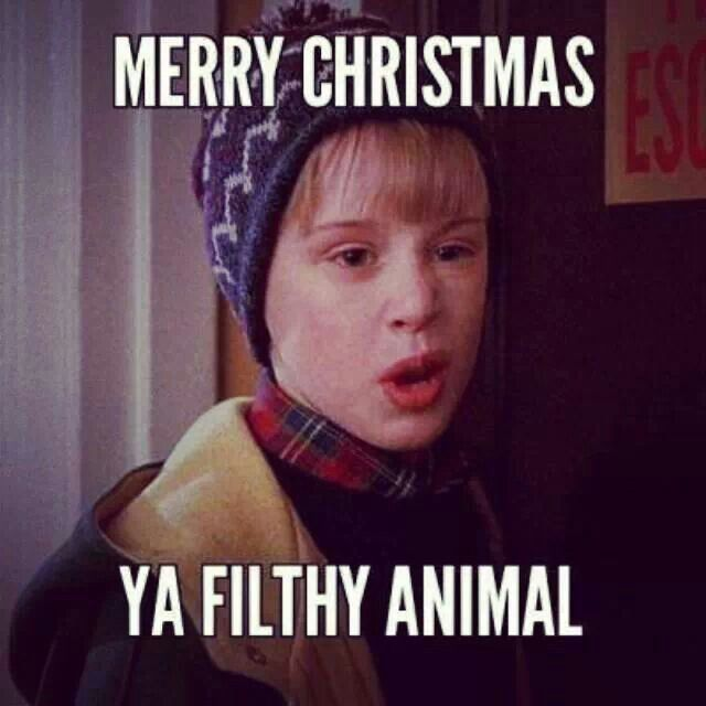 Funny Home Alone Quotes: 12 Best Happy Birthday Meme's Images On Pinterest