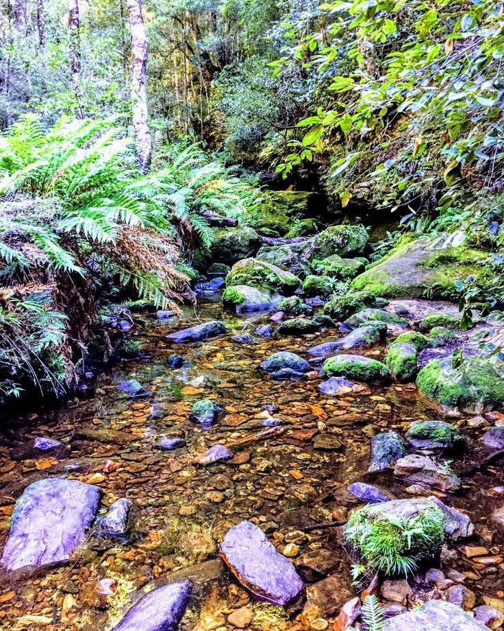 More epic-ness. #bluemountains #grandcanyonwalk #nature #bushwalk #australia