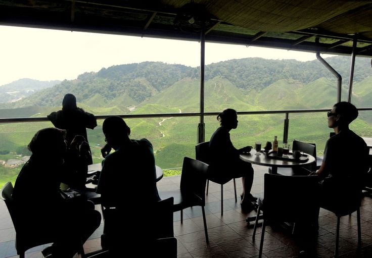 Cameron Valley Tea House and Tea Plantation in the Cameron Highlands