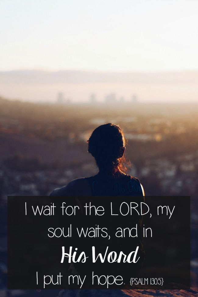 Bible Quotes: Patience in the Bible | Bible quotes, Quotes ...