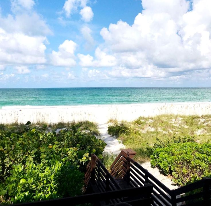 Anna Maria Island Beach: Take A Stroll With Us On This Beautiful Morning! This