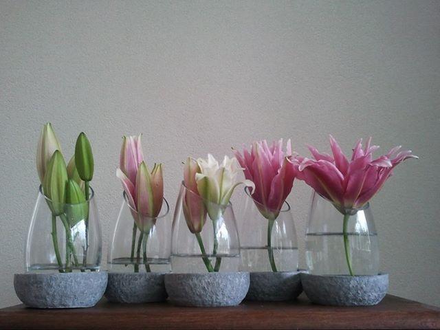 Decoratie Bloemist exclusief met de lelie roselilie. Een lelie zonder meeldraden. Gemaakt door Bun Crea Het bloemen meisje uit Amersfoort.