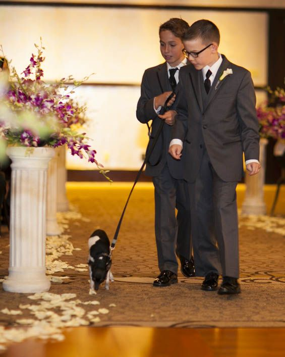 Ring bearers escorting the newlywed's favorite furry friend down the aisle