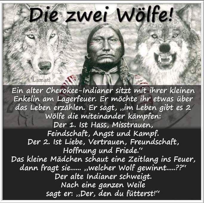 Die zwei Wölfe in Dir
