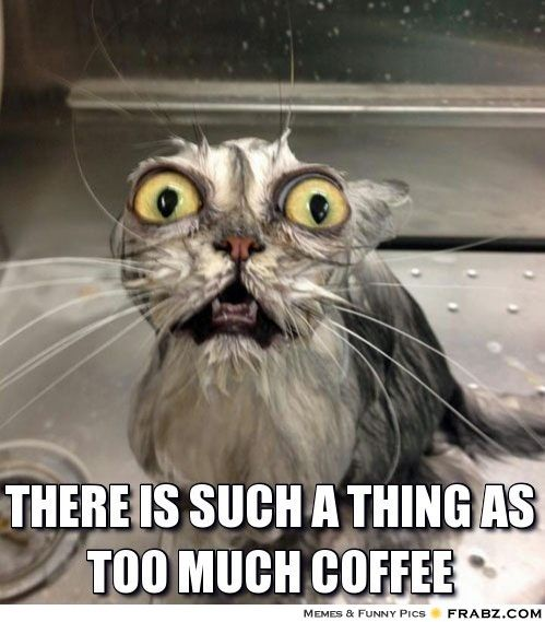 Image result for over caffeinated meme
