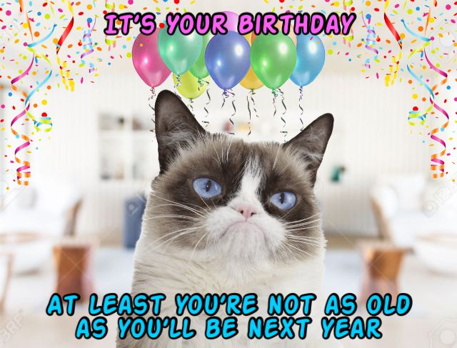 Grumpy Cat Says Happy Birthday At Least You Re Not As Old As You