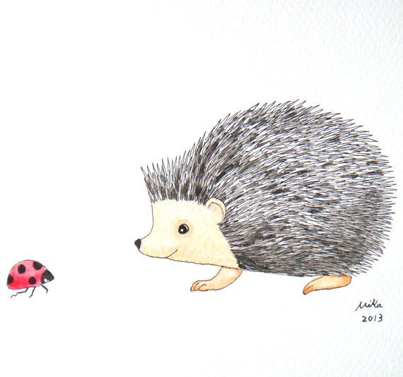 Hedgehog Ladybug Original Illustration Woodland Ink by mikaart, $21.99