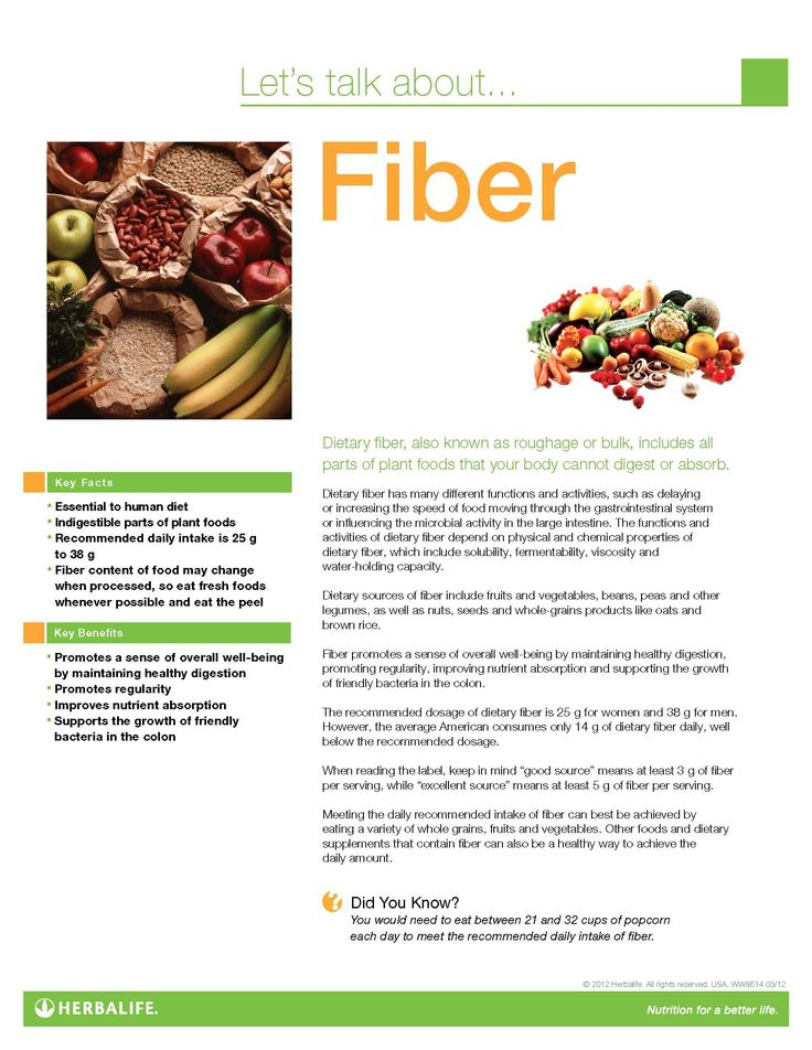 fiber fact sheet in 2019