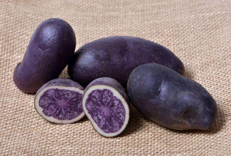 Paarse aardappelen doden de stamcellen van dikke darmkanker en voorkomen uitzaaiing van deze ziekte. Wetenschappers denken dat het resistente zetmeel, een onverteerbaar soort zetmeel, de darmbacteriën helpt een vetzuur te produceren dat ontsteking tegengaat en kankercellen helpt af te breken. Onderzoekers van het Penn State Hershey Cancer Institute hebben aardappelen met paars vruchtvlees getest op …