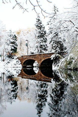 WINTER WONDERLAND landscape photography