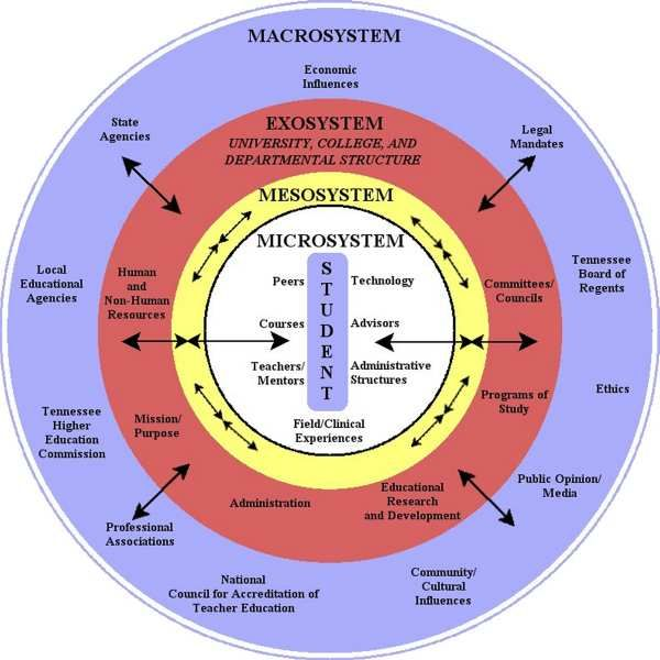 Bronfenbrenner's Bioecological Model