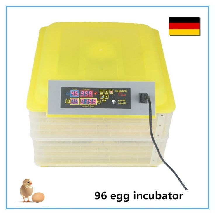 59.97$  Buy here - http://aie30.worlditems.win/all/product.php?id=32796182428 -  mini egg incubator chicken incubator cheap egg hatcher equipement  96 eggs
