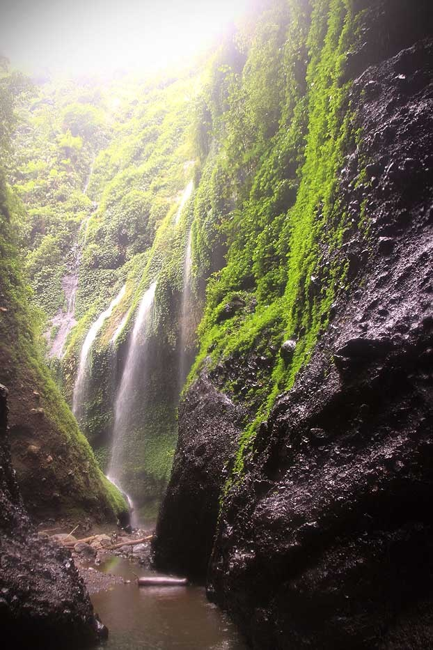 Passing the water curtain, this narrow crevice is the natural entrance into Madakaripura Waterfall.