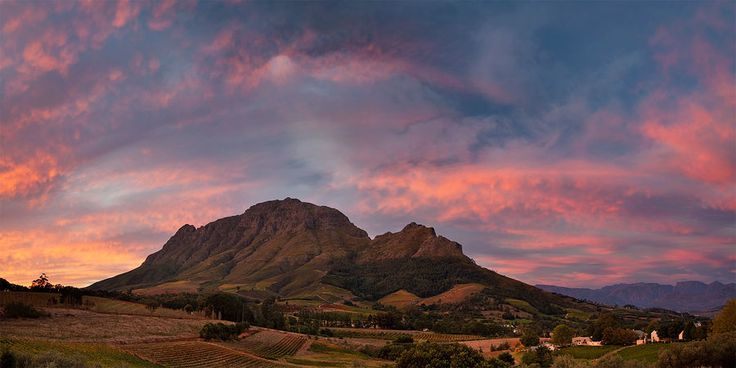 Simonsberg and it's foothills covered in vineyards and orchards at sunset.