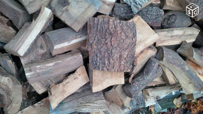 Les 25 meilleures id es de la cat gorie feuillus sur pinterest reconnaitre les arbres - Arbre fruitier comme bois de chauffage ...