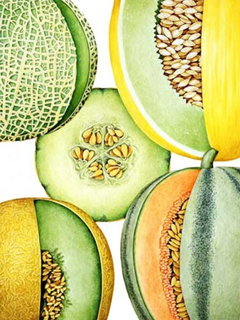 handpainted heritage melons.