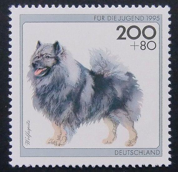 Keeshond Stamp 5377  Gerahmte Briefmarke Kunst  Wolfsspitz von PassionGiftStampArt, $12.90