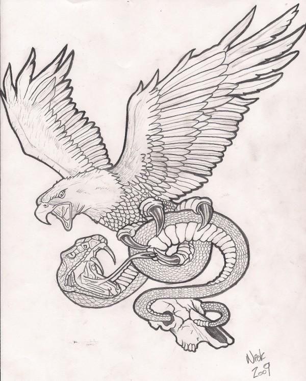Eagle n Snake Tattoo Drawing   Tattoobite.com