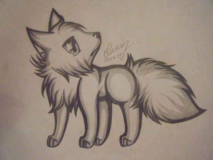 wolf drawings drawing cute cool pencil anime wolves animal sketch draw baby amazing library clipart stuff easy simple deviantart