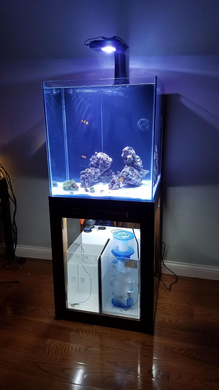 17 best ideas about custom aquariums on pinterest for Custom fish tank stand