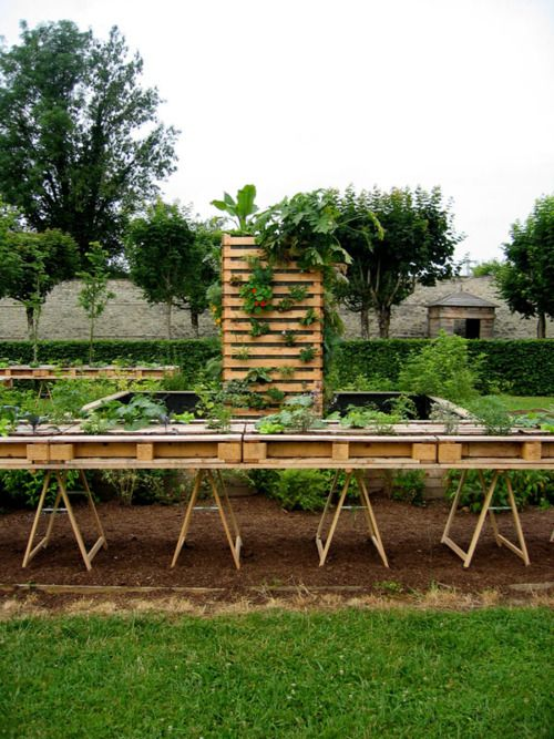 Raised garden with pallets (check pallets for evidence of chemicals first). Another pin had the pallet just with garden cloth tacked to one side, fill with dirt, set plants in (pallet set on ground)