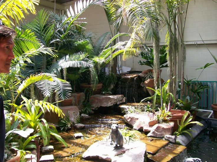 13 best indoor pond ideas images on pinterest indoor for Indoor pond design