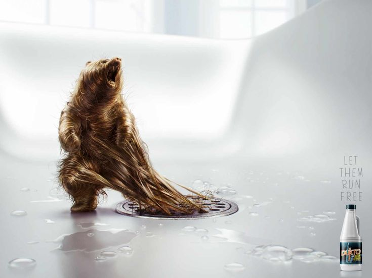 "Dukto drain opener: ""Bear""  Let them run free.  Advertising Agency: Fahrenheit DDB, Lima, Peru Executive Creative Director: Ricardo Chadwick Creative Director: Ricardo Mendoza Head of Art: Luciano Leone Illustrator: Estilo3D"
