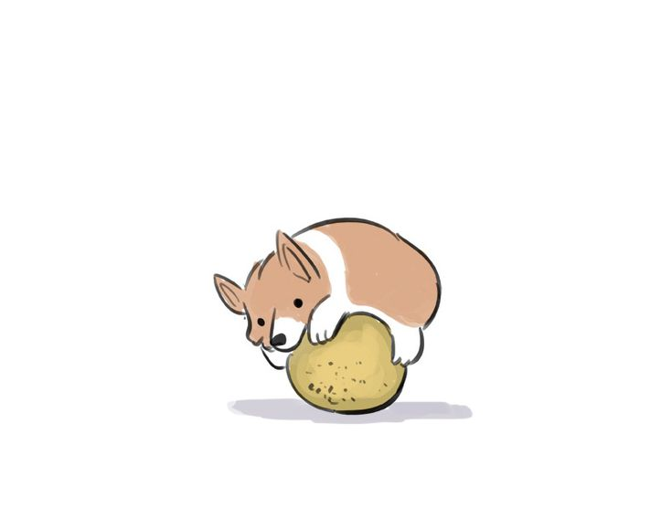 Image result for corgi cartoon