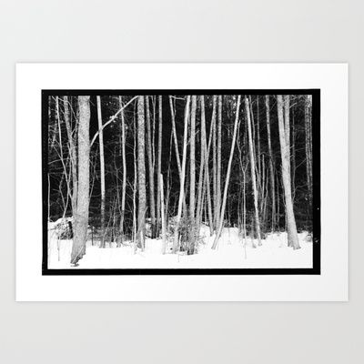 Norwegian forest VIII Art Print by Plasmodi - $17.00
